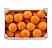 Bollo mandarijnen kistje 2,3 kilo