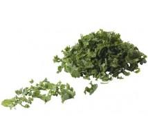 Boerenkool 250 gram