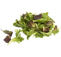 Indoor salad mix mustard zak 250 gram